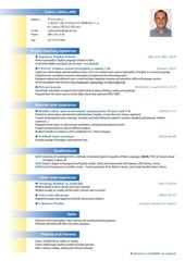 Fichier PDF cv cedriclavallard 2016 jap 1