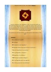 Fichier PDF candidature ashigaru 2