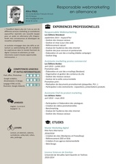 Fichier PDF cv responsablewebmarketing alicepaul