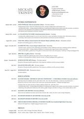 mickael tkindt resume