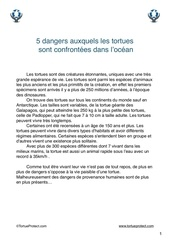 5 dangers des tortues tortue protect