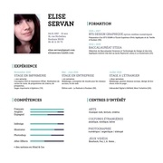 Fichier PDF servan elise cv