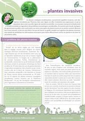 fiche plantesinvasives