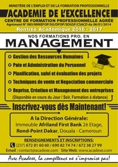 affiche management et strategies