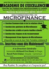 Fichier PDF affiche microfinances