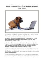 votre chien est peut Etre plus intelligent que vous