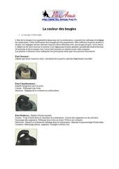 Fichier PDF etat des bougies