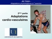 adaptations cardio vasculaires partie 1