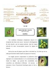 rappel de mouche de l olive