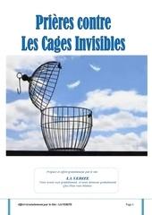 Fichier PDF les cages invisibles