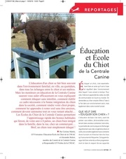 Fichier PDF ccm n180 reportages Ecole du chiot v1