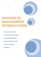 notions de management interculturel hofstede