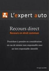 Fichier PDF recours direct