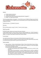Fichier PDF regleslacochonnaille