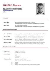 Fichier PDF curriculum vitae thomas marduel