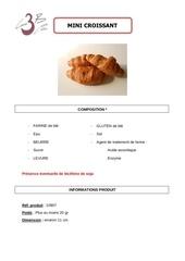 Fichier PDF croissant mini