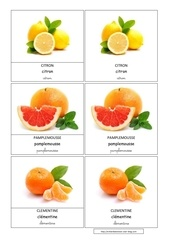 citron pamplemousse clementine