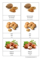pecan noix noisette