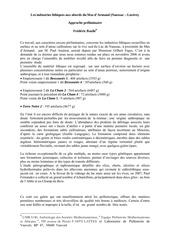 approche preliminaire sur les industries lithiques 1