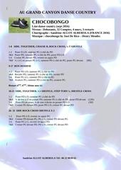 Fichier PDF chocobongo
