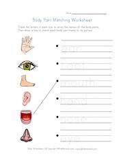 body parts matching worksheet