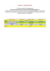 Fichier PDF annonce stage toussaint