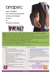 Fichier PDF annonce presse appel a candidature