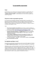 statut des gyropodes et gyroroues 003