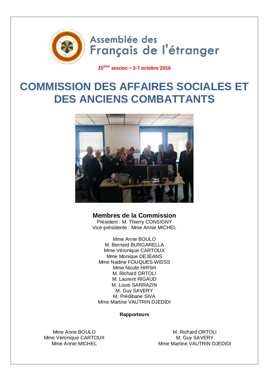 Aperçu du document AFE_Rapport affaires sociales_octobre 2016_final.pdf - page 1/14