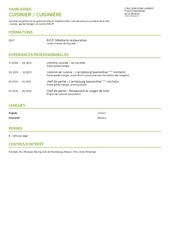Fichier PDF cvyann