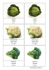 Fichier PDF choux choux fleur brocolis