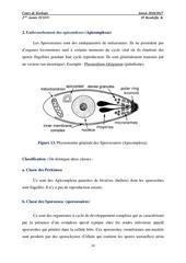 chapitre 02 les protozoaires partie 02