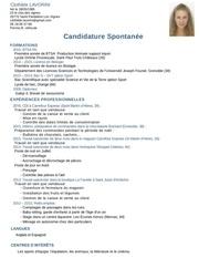 Fichier PDF clothilde lavorini cv