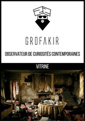 portfolio grofakir 6
