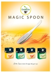 Fichier PDF magic spoon presentation english compressed