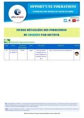 Fichier PDF of dt49 segre fiche detaillee secteur industrie
