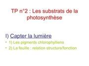 Fichier PDF metabolisme cellulaire