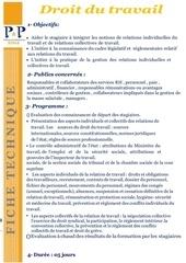 Fichier PDF 31 droit du travail