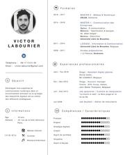 cv victor labourier
