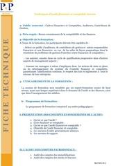 techniques d audit financier et comptable interne