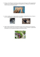environnement et metabolisme 1