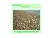 morilles siliceuses carnets naturalistes d raymond 2016