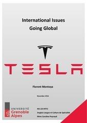 going global tesla motors