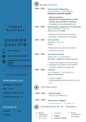 Fichier PDF cv fabien