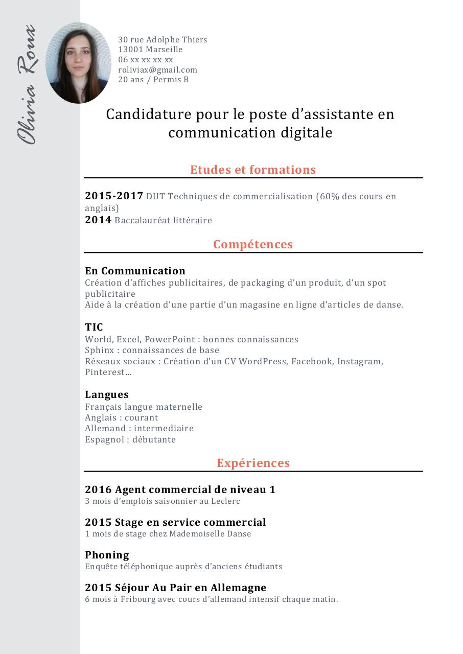cv ppp fran u00e7ais  cv ppp fran u00e7ais pdf