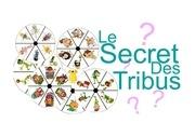 le secret des tribus pdf