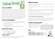 Fichier PDF challenge dressage