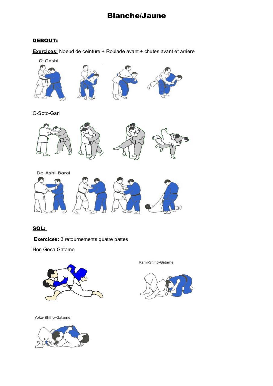 passage de grade judo pdf par DA SILVA Nicolas - Fichier PDF a44755dc212