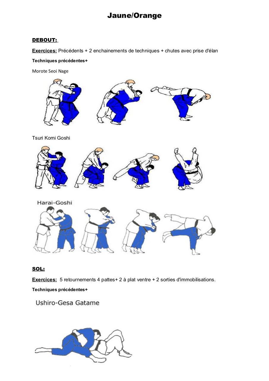passage de grade judo pdf par DA SILVA Nicolas - Fichier PDF