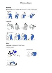 passage de grade judo pdf
